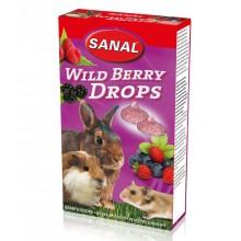Лакомство дропсы Sanal Wild Berry Drops с лесными ягодами для грызунов