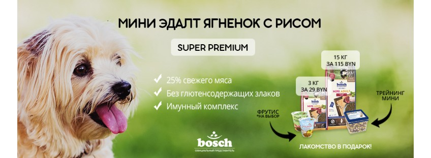 Акция Bosch Mini Adult