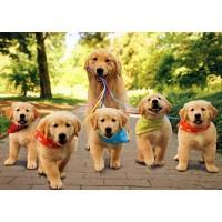Товары для собак и щенков