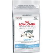 Сухой корм Royal Canin Queen 34 для беременных кошек