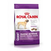 Сухой корм Royal Canin Giant Junior Active для активных щенков гигантских размеров