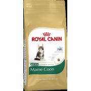 Сухой корм Royal Canin Kitten Maine Coon для котят породы Мейн Кун
